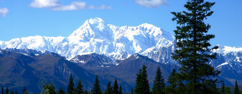 Featured Attraction: Denali National Park