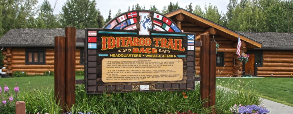 Discover the Iditarod