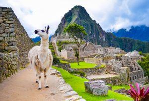 New International tours revealed! Costa Rica & Panama, Peru, and Vietnam & Hong Kong 1