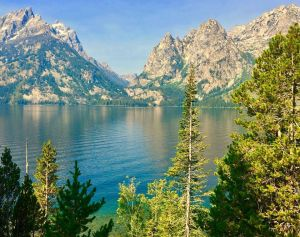 Contest finalist #1 Colleen Kuharchik - Grand Teton National Park, WY