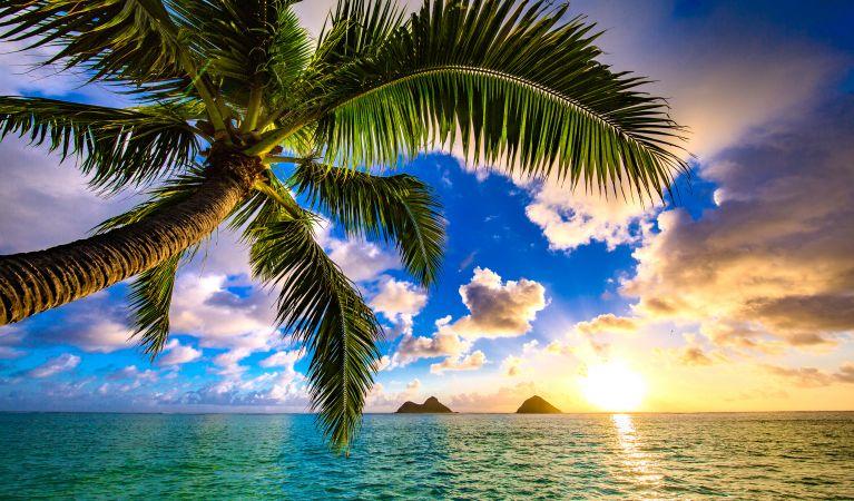 Hawaii Three Island Holiday-KFYR TV