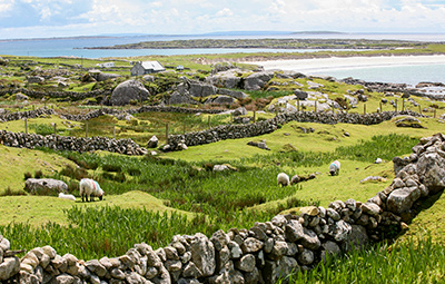 Enchanting Ireland: The Folklore All Around Us 2