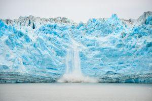 Glacier Bay Magnificence 2