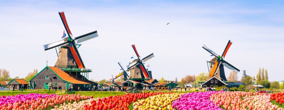 5 Memories You'll Never Forget on a Holiday Vacations Tour of Holland 6
