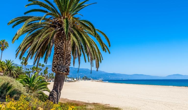 Southern California Dreaming-WSAZ TV