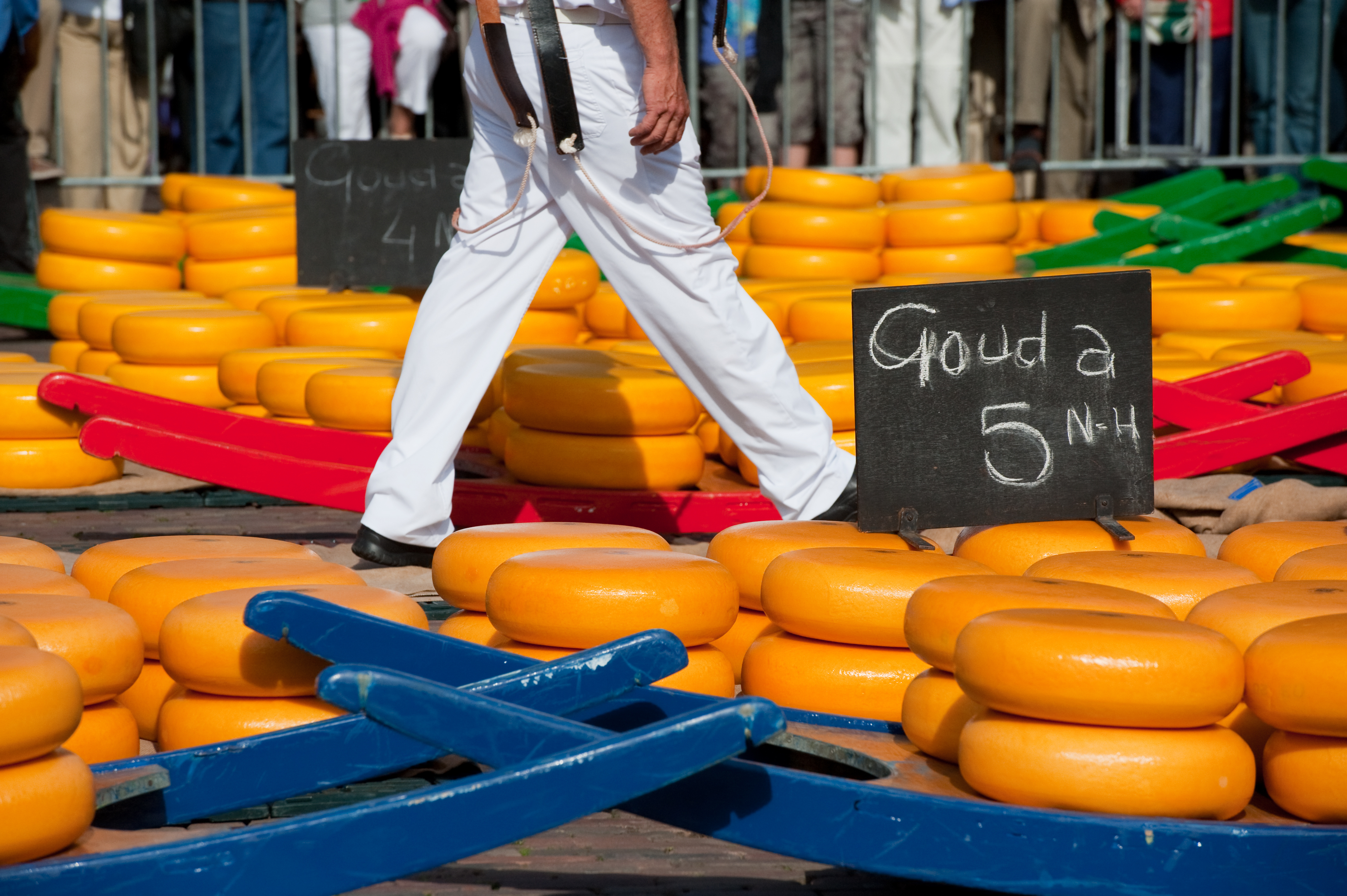 5 Memories You'll Never Forget on a Holiday Vacations Tour of Holland 2