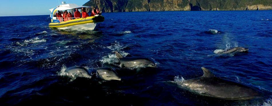 Ecotourism 8
